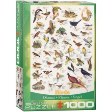 Eurographics 1000 - Birds in the fields and gardens
