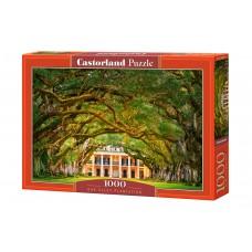 Castorland 1000  - Oak plantation