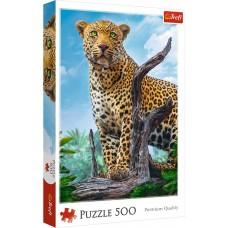 Trefl 500 - Leopard