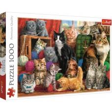 Trefl 1000 - Cat Meeting, Marcello Corti